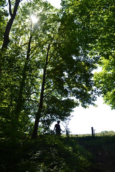 Trail CHB nature